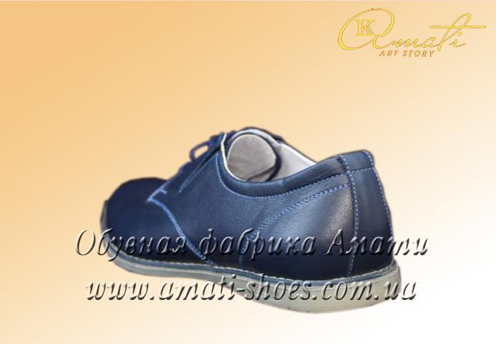 Туфли мужские 222 (1)